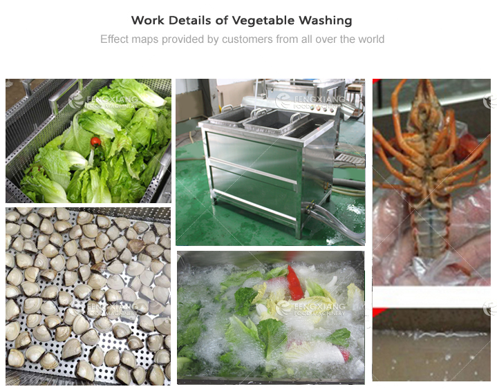 Bubble Ultrasonic Ozone Combined Vegetable Washing Machine