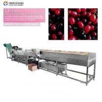Cumquat Kumquat Tomato Washing and Drying Machines Processing Line