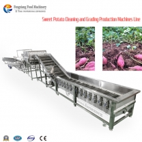 Automatic Onion Grading Size and Cleaning machine\ onion washing grading machines \onion sorting machine