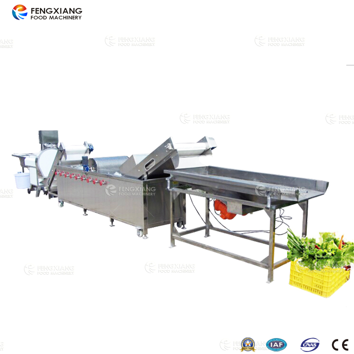 vegetable cutting and washing production line
