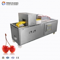 CL-S Plum Stone Remove Machine