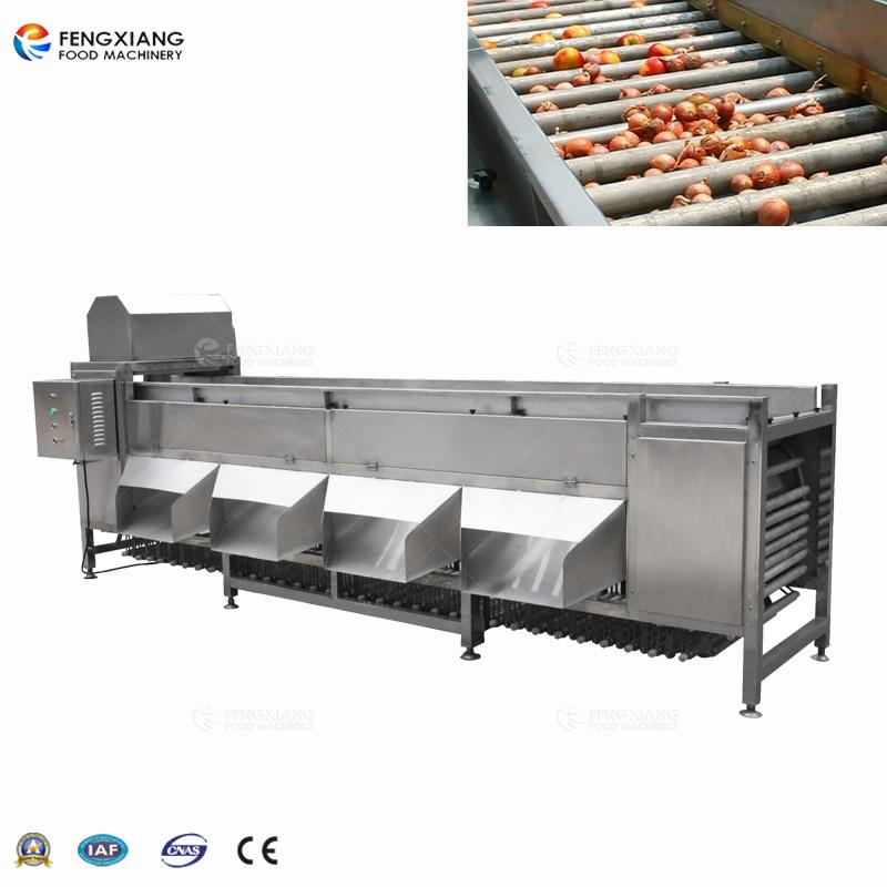 vegetable sorting machine
