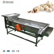 QG-202 Vibration Sorting Machine Garlic Grading Processing Equipment