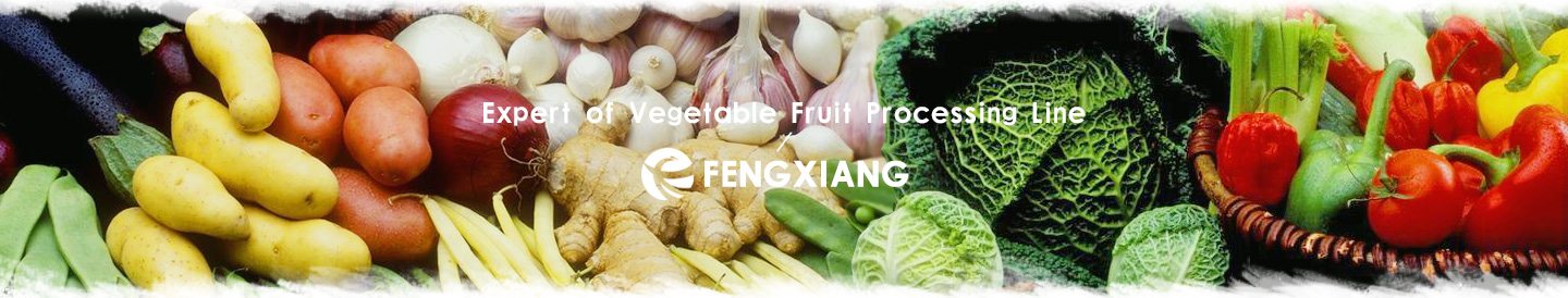 Cleaning Vegetable Processing