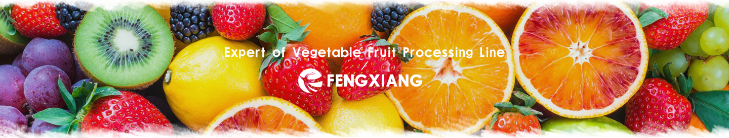Fruits peocessing machines