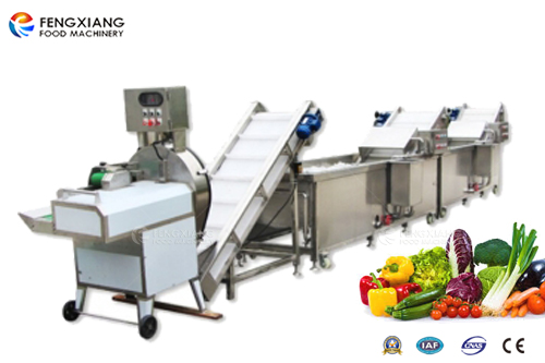 vegetable cutting and washing machine processing line