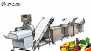 Fengxiang Officially Put Into Operation Vegetable Cutting and Cleaning Line for a Primary School Canteen