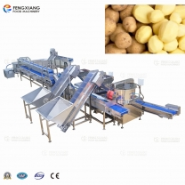 Sweet Potato Taro Peeling and Washing Machine for Production Line