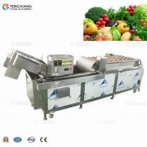 WA2000 High Spray Vegetable Fruit Bubble Washing Machine