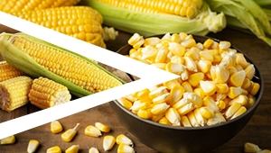 Sweet Corn Threshing Plan