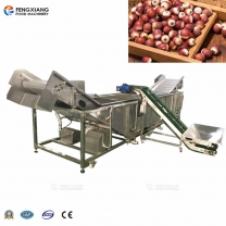 Industrial Large Washing Impurity Removing Machine for Gordon Euryale Seed