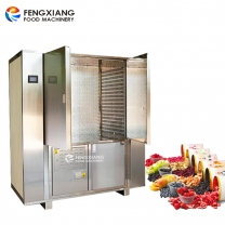 Industrial Medium Temperature Double Door Food Dryer Machine