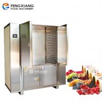 Industrial Medium Temperature Double Door Food Dryer Machine