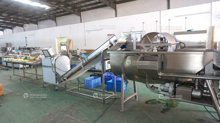 industrial vegetable processing line