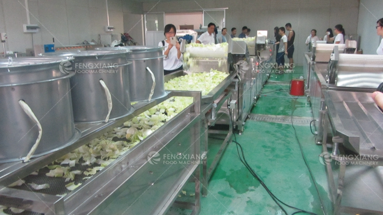 vegetable fruit cold air drying machine