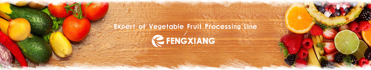 Fruits Processing Line