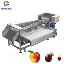 Belt Type Vegetable and Fruit Classifier Machine Broccoli Sorting Machine