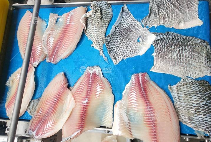 Fish Skin Removing Machine