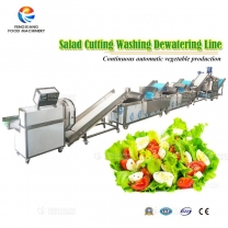 Vegetable Salad Processing Line for Cutting ,Bubble Washing ,Dehydrating