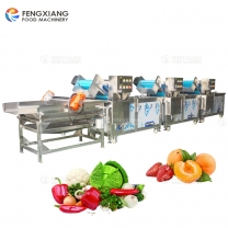 Three Fruit and Vegetable Washing Machines + Vibration Dewatering Machine
