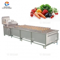 WASP-3000 Industrial Large Vegetable Fruit Spray Washing Machine