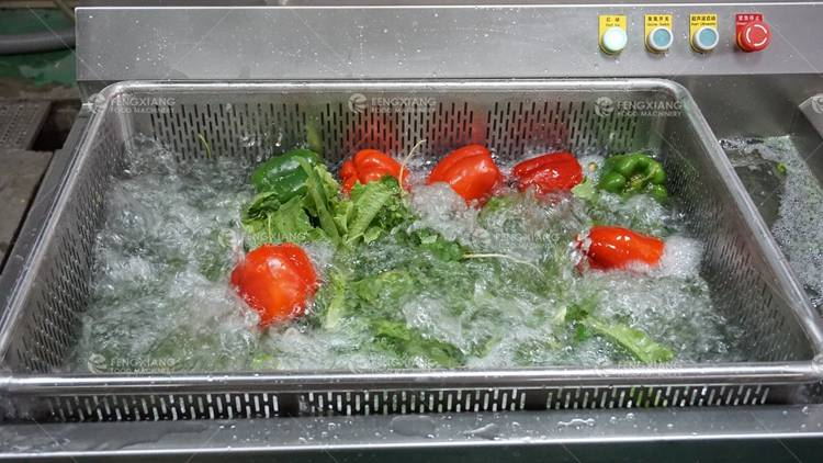 Multifunction Automatic Vegetable and Fruit Washing Machine