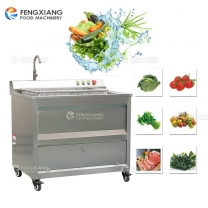 WASC-10 Multifunction Automatic Vegetable and Fruit Washing Machine
