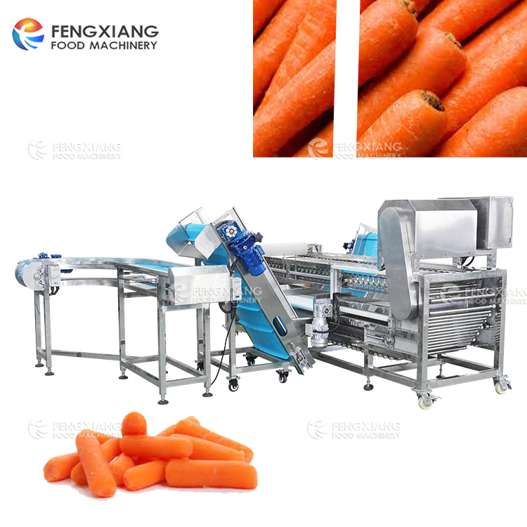Carrot Sorting and Transportation Production Line