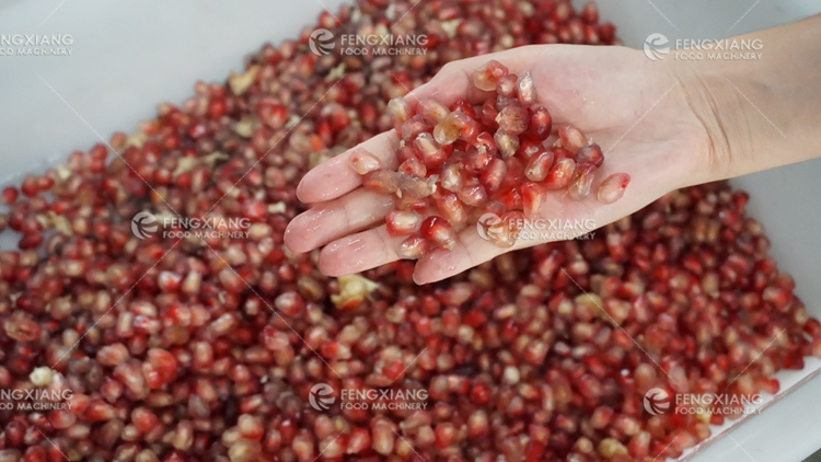 Pomegranate juice making production line