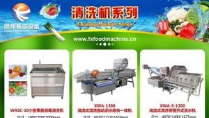 Fengxiang vegetable and Fruit washing machines guarantee the cleaning before material processing!