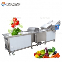 WA-2000 Vegetable and Fruit Washing Machine