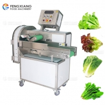 Fengxiang FC-306L Automatic Vegetable Cutting Machine Cabbage Slicing Machine