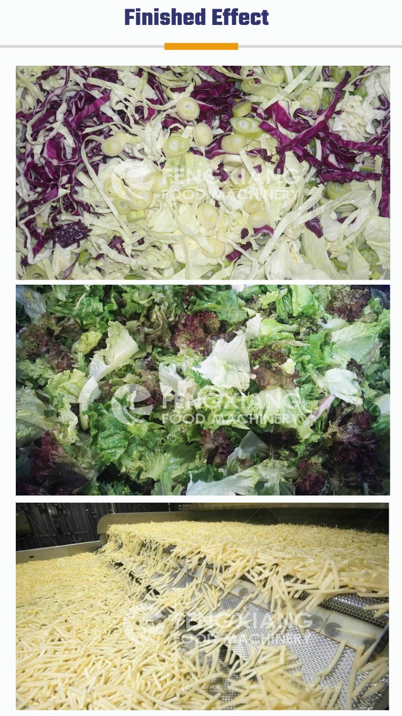 Automatic Salad Production Line