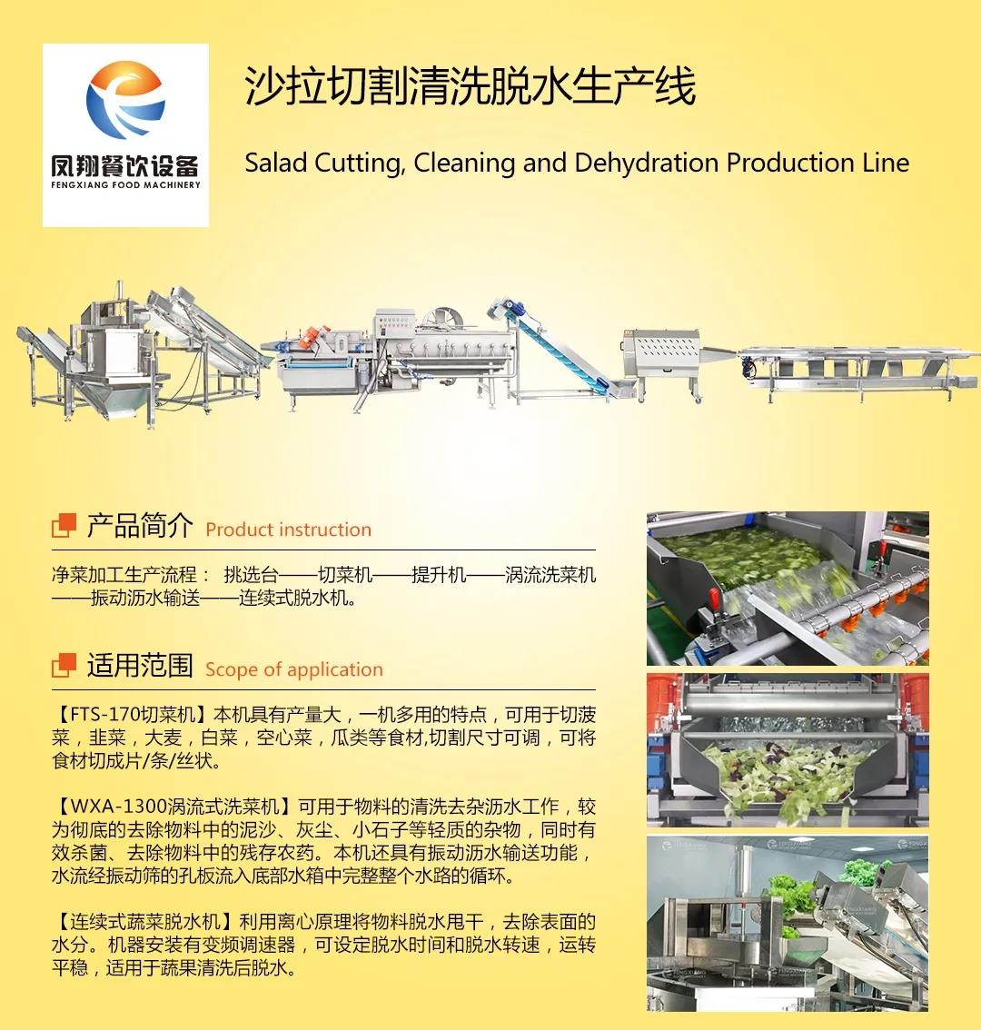 fengxiang salad processing line