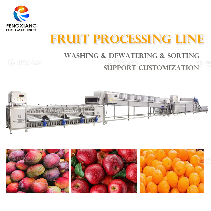 Industrial FruitProduction Line